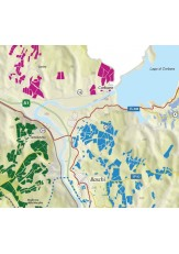 Masnaghetti/ENOGEA-Karte - Orvieto