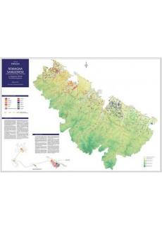 Masnaghetti Karten -Romagna Sangiovese